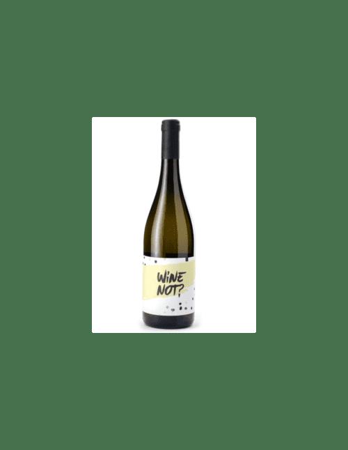 Wine Not Paestum frizzante